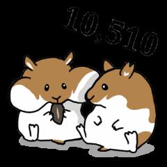 hamster tenco or coten