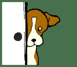 Jack Russell Terrier festival! sticker #897472