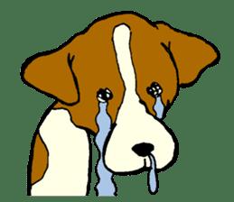 Jack Russell Terrier festival! sticker #897475