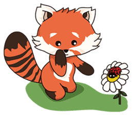 Little Tipsy the Red Panda sticker #897573