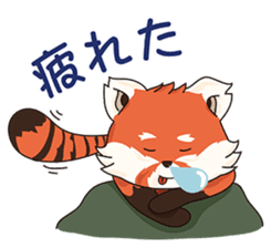 Little Tipsy the Red Panda sticker #897587
