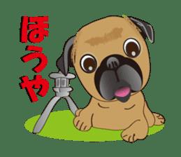 Pag of rednecks Japan sticker #899526