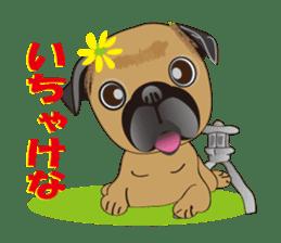 Pag of rednecks Japan sticker #899534