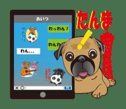 Pag of rednecks Japan sticker #899536