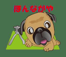 Pag of rednecks Japan sticker #899551