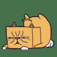 Exotic Cube Cat sticker #900709