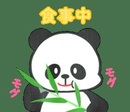 Panda Panda Panda sticker #901352