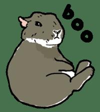 Rabbit Behavior(English ver.) sticker #905330