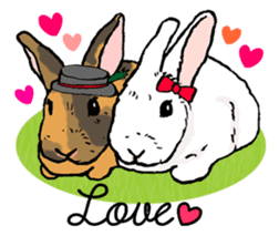 Rabbit Behavior(English ver.) sticker #905335