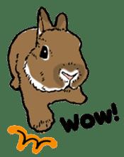 Rabbit Behavior(English ver.) sticker #905340