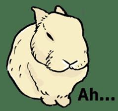 Rabbit Behavior(English ver.) sticker #905342
