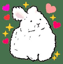 Rabbit Behavior(English ver.) sticker #905353