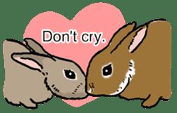 Rabbit Behavior(English ver.) sticker #905357