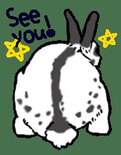 Rabbit Behavior(English ver.) sticker #905358