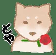 Shiba Inu ! sticker #910483
