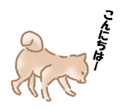 Shiba Inu ! sticker #910484