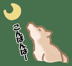 Shiba Inu ! sticker #910491