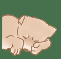 Shiba Inu ! sticker #910493