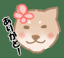 Shiba Inu ! sticker #910496
