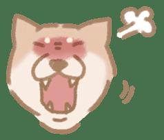 Shiba Inu ! sticker #910507