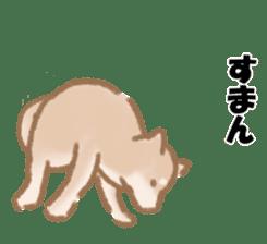 Shiba Inu ! sticker #910511