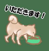 Shiba Inu ! sticker #910514