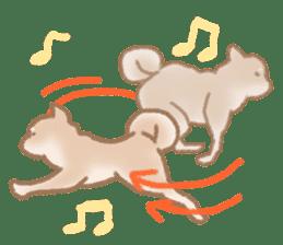 Shiba Inu ! sticker #910517