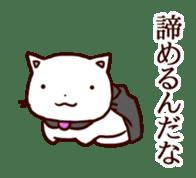 A bad cat sticker #910621