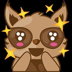 Taro, the funny racoon