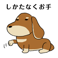 Dog sticker [Dachshund]