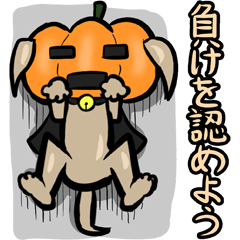 Pumpkin dog(Japanese version)