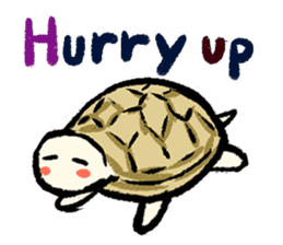 Pate & Pany(Rabbit & turtle/English) sticker #925383