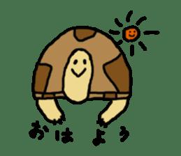 tortoises sticker #926400