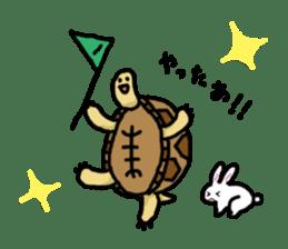 tortoises sticker #926402