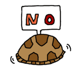 tortoises sticker #926406