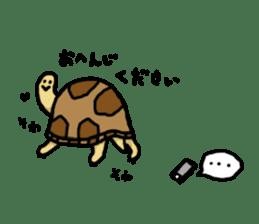 tortoises sticker #926423