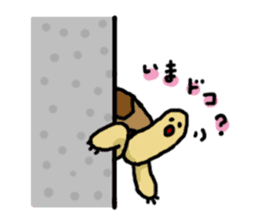 tortoises sticker #926426