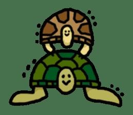 tortoises sticker #926438