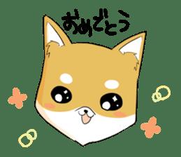 Dog Samurai My name Hachi. sticker #928532