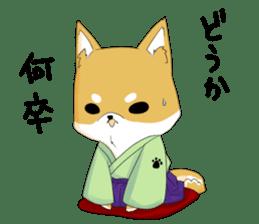 Dog Samurai My name Hachi. sticker #928548