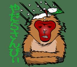 Japanese Macaque!? sticker #934693