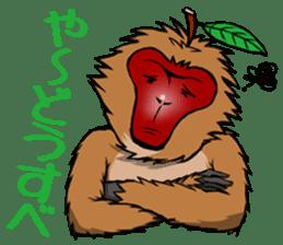 Japanese Macaque!? sticker #934702