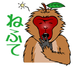 Japanese Macaque!? sticker #934703