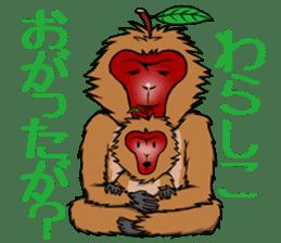 Japanese Macaque!? sticker #934705