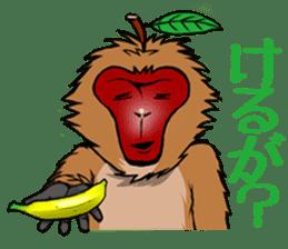 Japanese Macaque!? sticker #934711