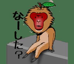 Japanese Macaque!? sticker #934713