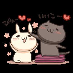 Shiro the rabbit & kuro the cat