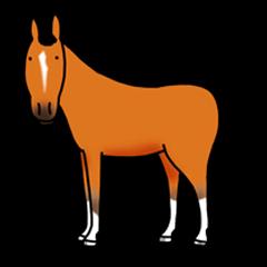 Juri Ogawa's HORSE Stickers