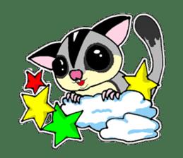 I love Sugar Glider sticker #953676