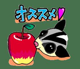 I love Sugar Glider sticker #953679